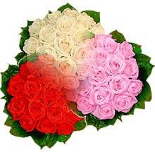 3 renkte gül seven sever   Adana çiçekçiler çiçek , çiçekçi , çiçekçilik