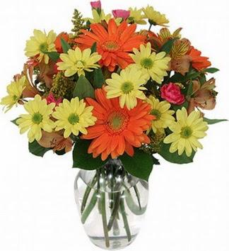Adana hediye sevgilime hediye çiçek  vazo içerisinde karışık mevsim çiçekleri
