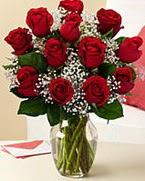 Sevgilime hediye 9 adet 1.ci kalite gül  Adana anneler günü çiçek yolla