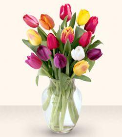 Adana çiçekçiler  13 adet cam yada mika vazoda laleler