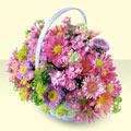 Adana yurtiçi ve yurtdışı çiçek siparişi  bir sepet dolusu kir çiçegi  Adana çiçek yolla çiçek gönderme sitemiz güvenlidir
