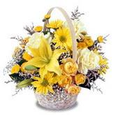 sadece sari çiçek sepeti   Adana çiçek yolla çiçek gönderme sitemiz güvenlidir