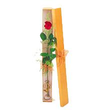 ince  kutuda  1  gül   Adana çiçek satışı çiçek yolla