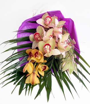 Adana cicekciler , cicek siparisi  1 adet dal orkide buket halinde sunulmakta