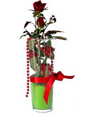 Adana online çiçek gönderme sipariş  Cam yada mika içerisinde 9 adet kirmizi gül - sevdiklerinize özel