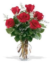 Adana çiçek yolla çiçek gönderme sitemiz güvenlidir  7 adet kirmizi gül cam yada mika vazoda sevenlere