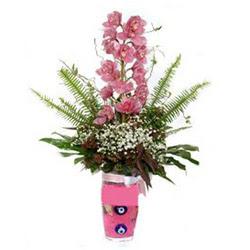 Adanada çiçekçiler hediye çiçek yolla  cam yada mika vazo içerisinde tek dal orkide çiçegi