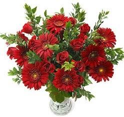 5 adet kirmizi gül 5 adet gerbera aranjmani  Adanada çiçekçiler hediye çiçek yolla