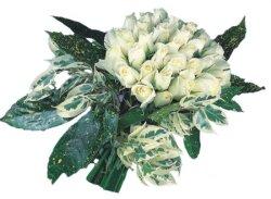 Adana internetten çiçek siparişi  9 Beyaz gül Özel kisiler için