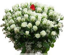 Adana internetten çiçek satışı  100 adet beyaz 1 adet kirmizi gül buketi