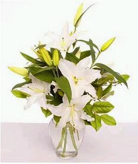 Adana çiçek siparişi çiçek gönderme  2 dal cazablanca vazo çiçeği