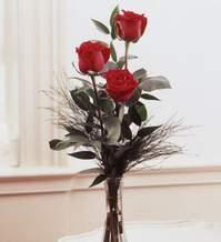 Adana internetten çiçek satışı  Vazoda 3 adet güzel gül
