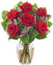 Kız arkadaşıma hediye 6 kırmızı gül  Adana internetten çiçek siparişi
