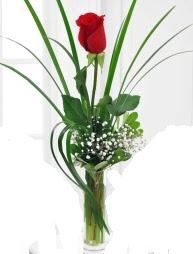 Cam içerisinde 1 kırmızı gül  Adana çiçek yolla çiçek gönderme sitemiz güvenlidir