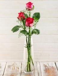 Cam içerisinde 3 kırmızı gül  Adana ucuz çiçekçi çiçek satışı