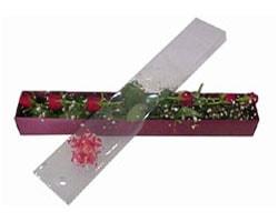 Adana anneler günü çiçek yolla   6 adet kirmizi gül kutu içinde