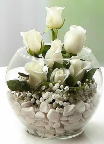 Beyaz Mutluluk 9 beyaz gül fanusta  Adana çiçek siparişi sitesi