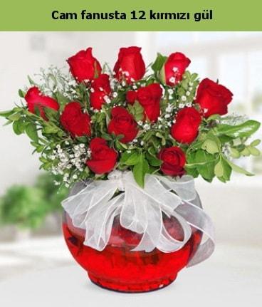 Cam içerisinde 12 adet kırmızı gül  Adana internetten çiçek satışı