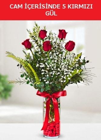 Cam içerisinde 5 adet kırmızı gül  Adana çiçek siparişi sitesi